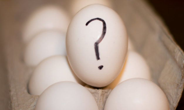 The great egg debate, helpful or harmful to our health?