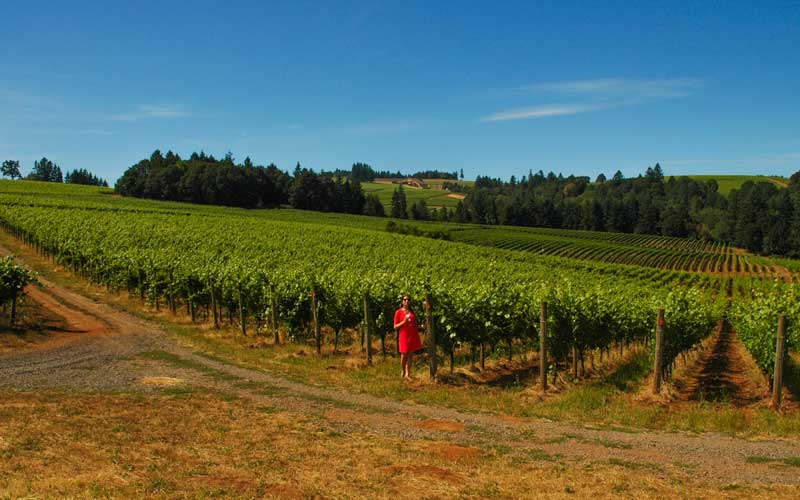 It's always nice spending the day visiting vineyards