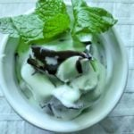 Mint Dark Chocolate No-Churn Ice Cream
