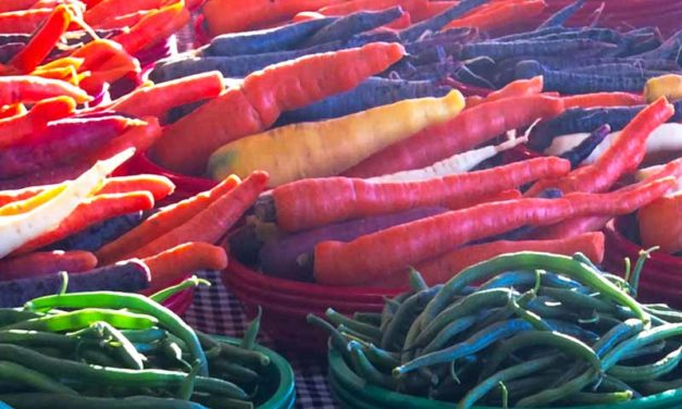 Carrot vs. Carrot: Simplifying the Conversation about Organics and GMOs