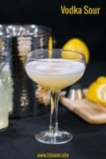 Vodka Sour Pinterest Single