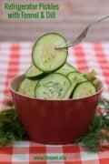 Refregerator Pickles Fennel Dill Pinterest Solo