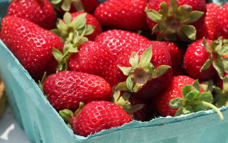 Summer strawberries for canning don't need to be picture perfect