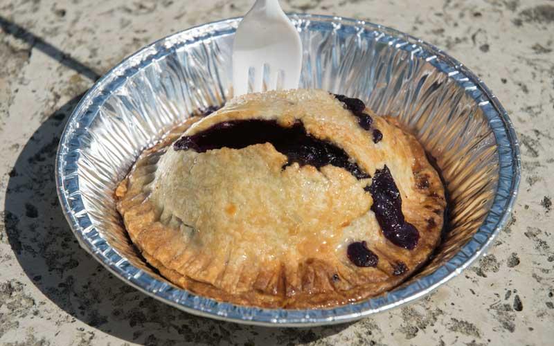 Boozy Blueberry Lemon Pie