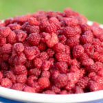 Walking the Green Path: An Abundance of Raspberries