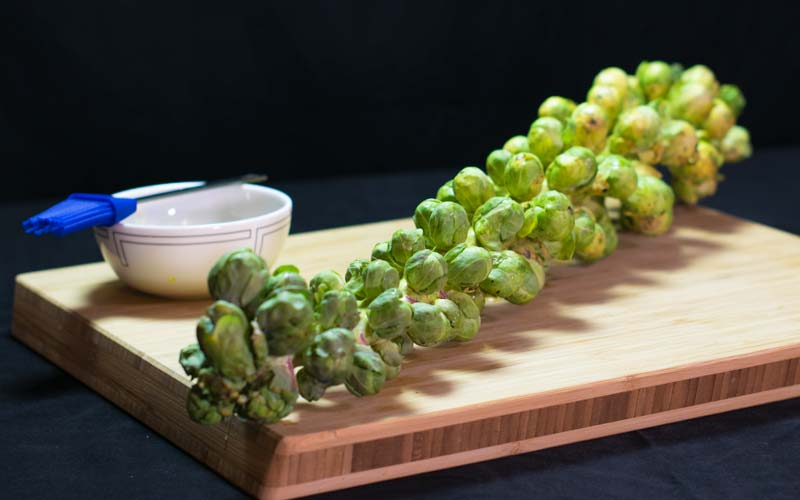 Brussels sprouts on the stalk