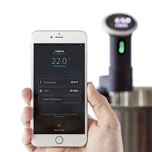 Anova Sous Vide Precision Cooker, WIFI 2nd Gen, 900 Watts