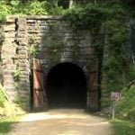 Walking the Green Path: A Tunnel Along the Path