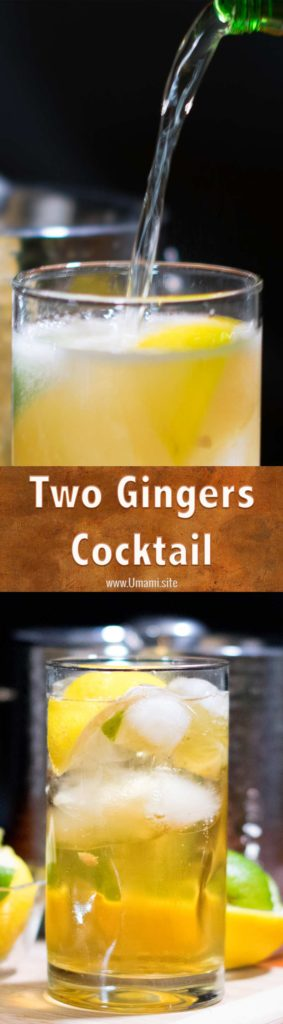 Two Ginger Cocktail Recipe