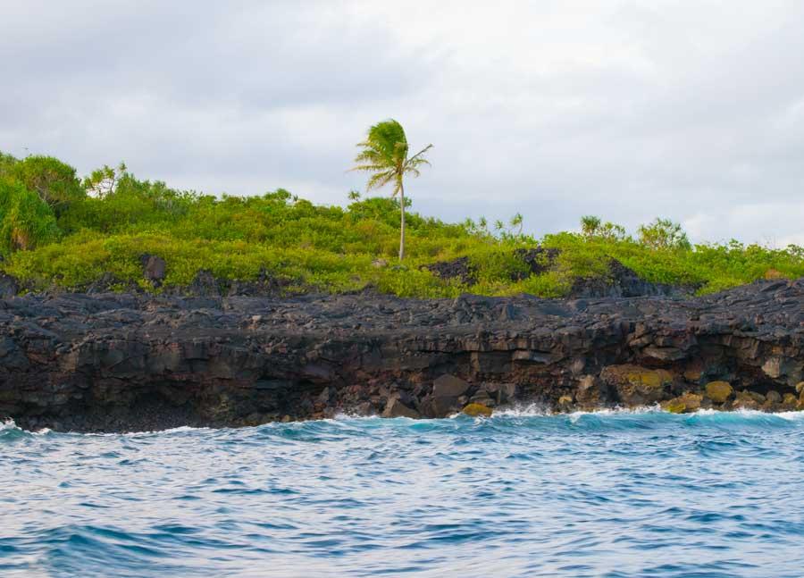 Lava Field along cost of Hawaii